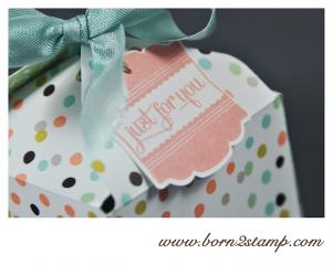 STAMPIN' UP! Verpackung mit dem Envelope Punch Board und SAB DSP Süße Sorbets und Nett-iketten und Stanze Designeretikett