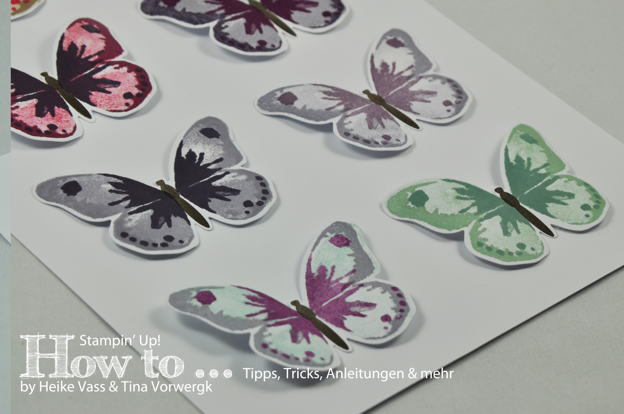 How to... Watercolor Wings Farbkombinationen - born2stamp
