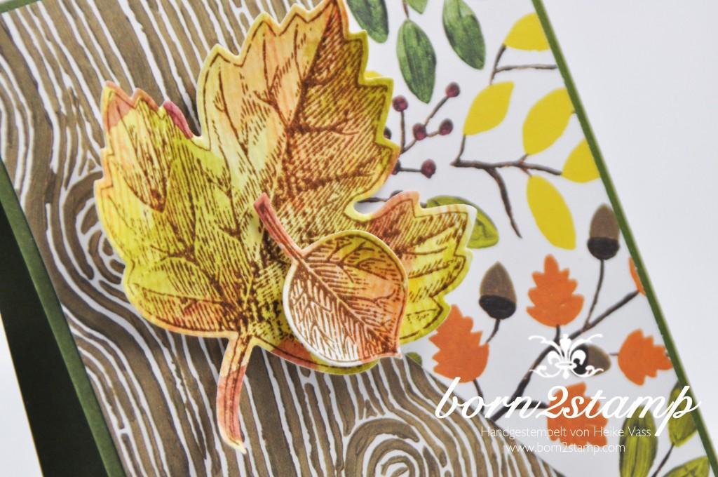 STAMPIN' UP! born2stamp Herbstkarte - DSP Am Waldrand - Vintage leaves - Leaflets Framelits - Von großer Bedeutung