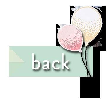 BH FSK_SAB 2016_back