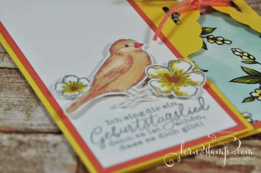 born2stamp STAMPIN' UP! Stempelnd durchs Jahr - Geburtstagskarte - Frei wie ein Vogel - Stampin' Blends - DSP Vogelgarten