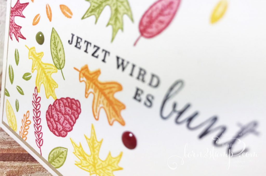 born2stamp Stempelnd durchs Jahr STAMPIN UP - Herbst - Schoener Herbst